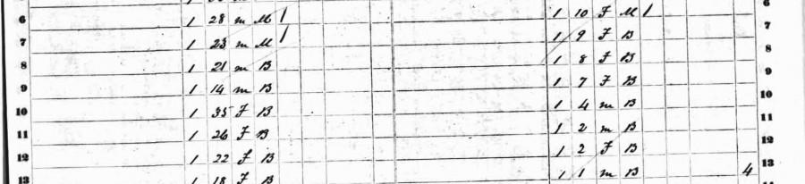 1860SlaveSchedules-Snippet